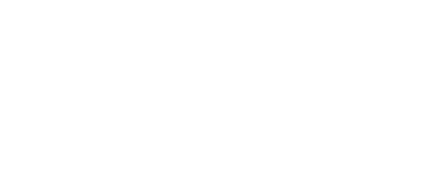 Digital Serbia Initiative